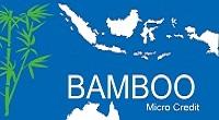 Bamboo Micro Credit(Inc)'s logo