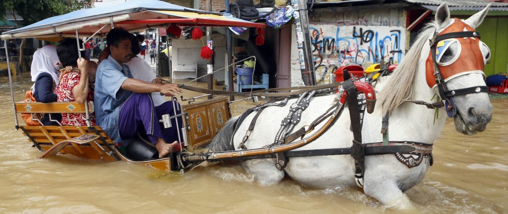 epa04018400 Residents ride on a horse-drawn carriage through floodwaters in Jakarta, Indonesia, 13 January 2014. Dozens of villages of 18 districts in Jakarta are flooded with water due to rain since last 11 January and caused more than 5,000 people to evacuate. According to the Extreme Weather Sub Division of the Meteorology and Geophysics Agency, the highest precipitation is predicted to occur in the end of January until early February, 2014. EPA/ADI WEDA